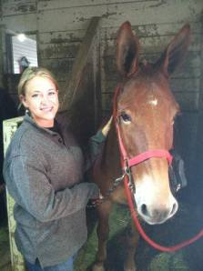 Im a mule rider