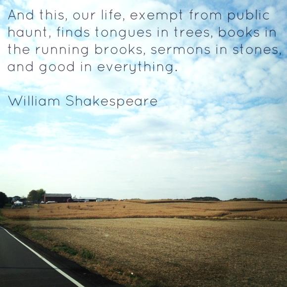 Outdoor Running Quote
